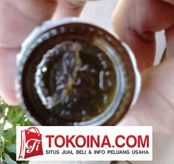 Minyak Tawon asli tanda bagian bawah botol