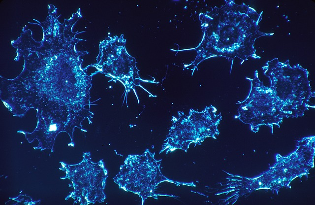 Pencegahan dan pengobatan alami kanker