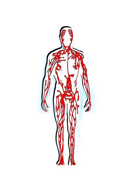 Membersihkan pembuluh darah secara alami