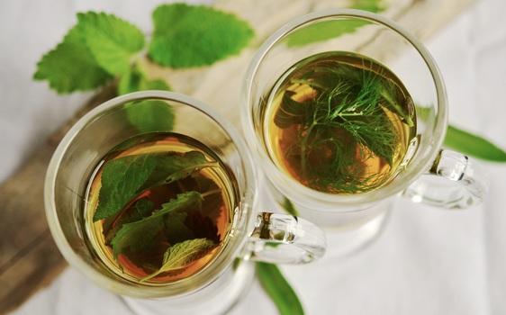 khasiat teh hijau bagi kecantikan