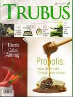Pengertian Propolis 1